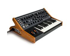 Moog Subsequent 25 1-0